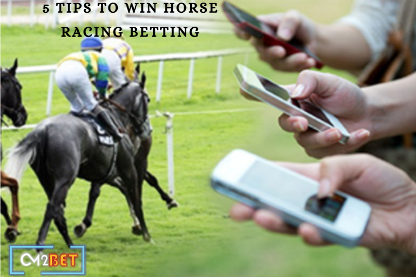 5 Tips to Win Horse Racing Betting