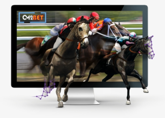 Horse racing winning strategies