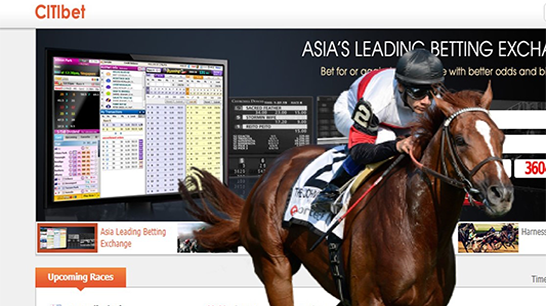 Make money through horse betting