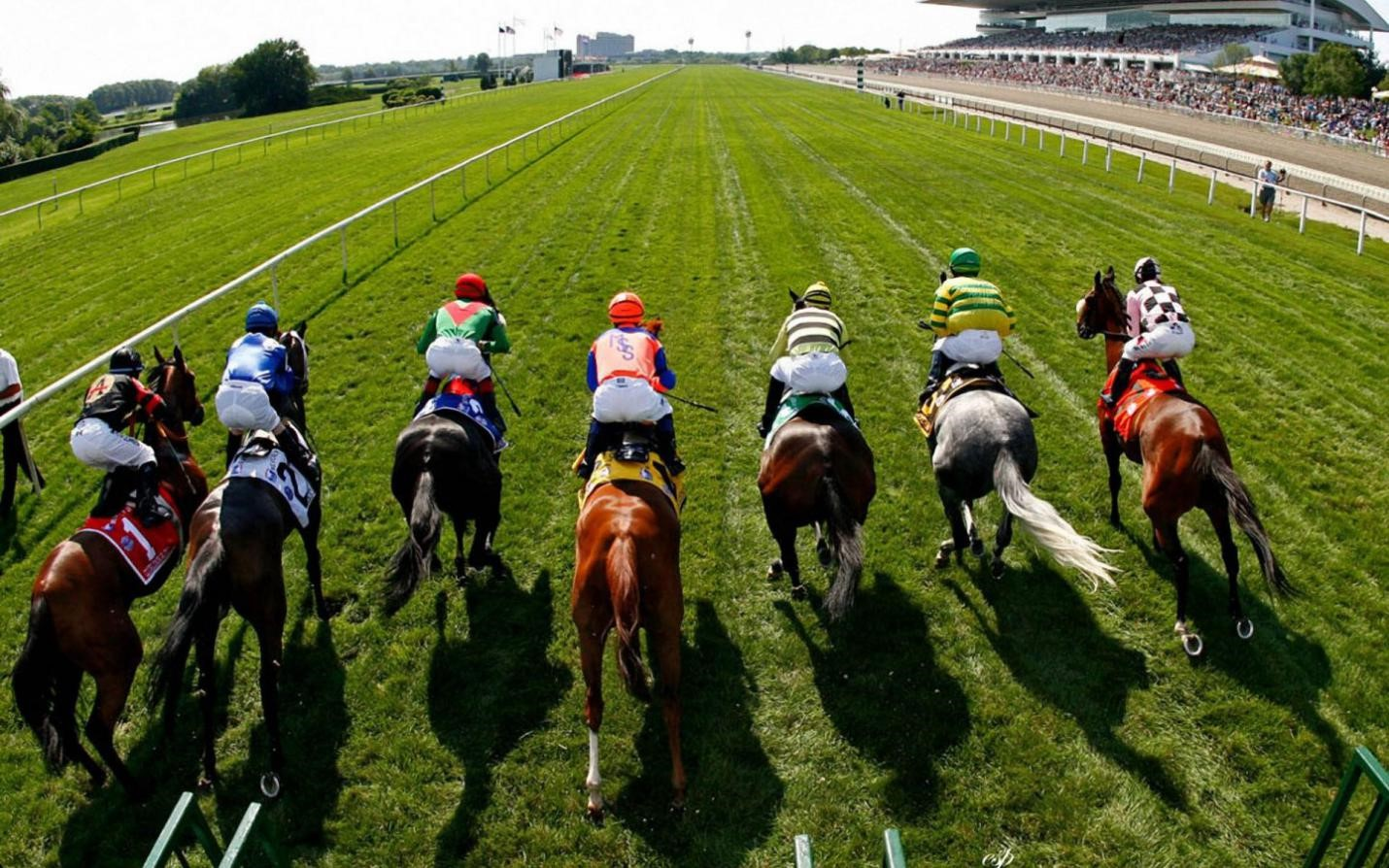 Horse Racing Trading Strategies